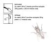 TWENTY ONE, insekticid adulticid, 1 kg