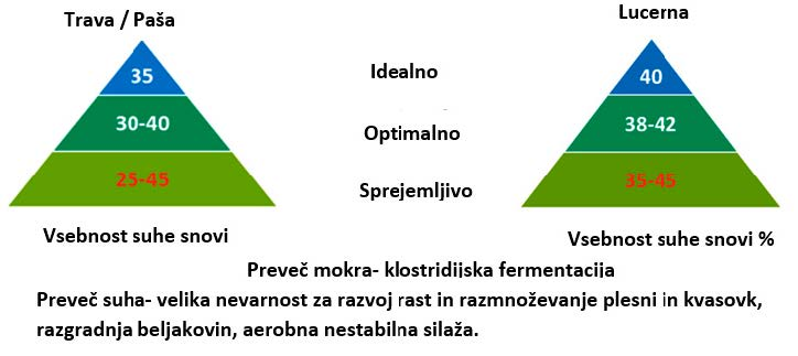 Suha snov ob siliranju je pokazatelj potencialnih težav med fermentacijo in pri krmljenju.